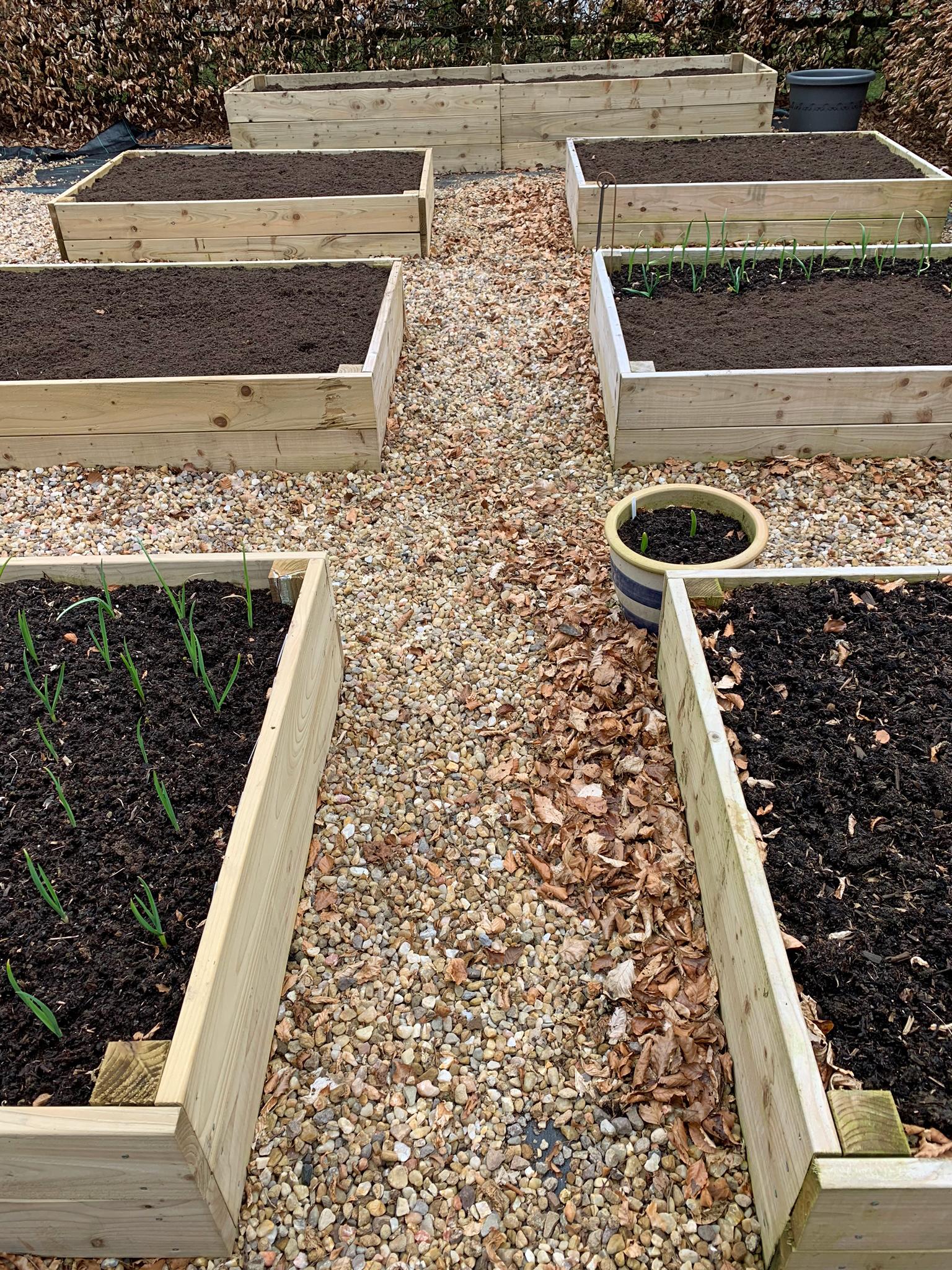 2019 Kitchen Garden Plans & Projects