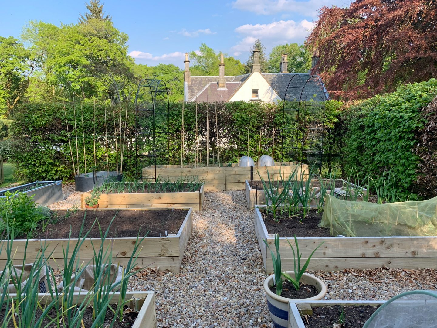 Scottish Vegetable Garden