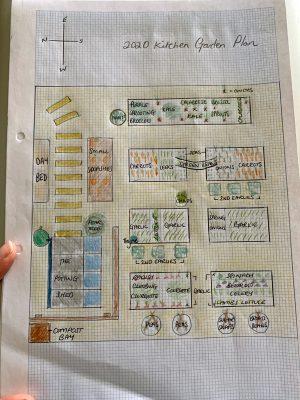 2020 Garden Plans & 5 Growing Tips for Beginners